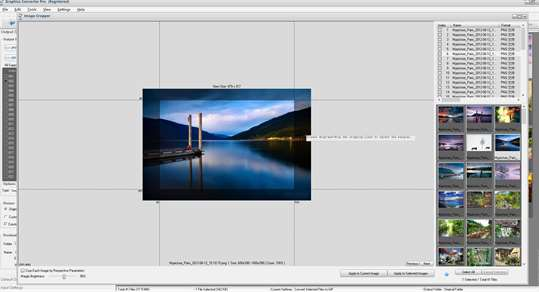 Graphics Converter Pro: Picture Converter,Vector Image Converter screenshot 8