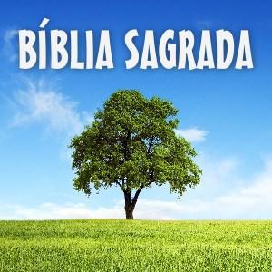 Bíblia Sagrada - Árvore da Vida