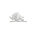 Rhino Player