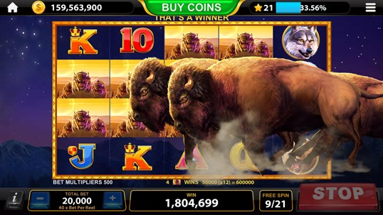 Pokies Port Douglas | Online Casino With No Deposit Bonuses And Slot