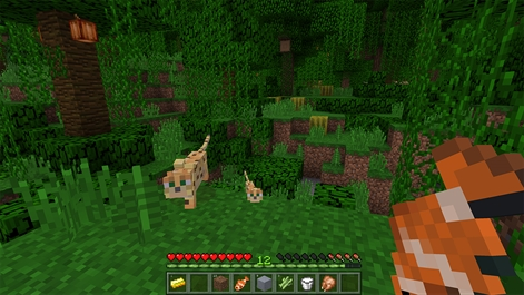 Minecraft for Windows 10 Screenshot