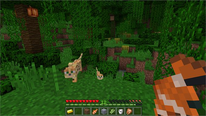 Minecraft for windows 10 microsoft store ja jp voltagebd Image collections