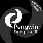Pengwin Enterprise 8 Logo