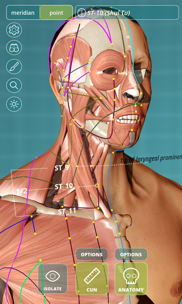 Visual Acupuncture