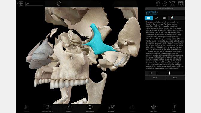 Human Anatomy Atlas 2018 Complete 3d Human Body For Windows 10 Free
