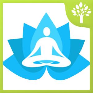 Get Yoga Trainer - Microsoft Store