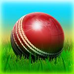 Cricket 3D World Street Challenge