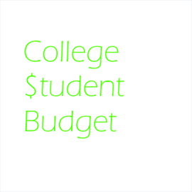 get college student budget microsoft store