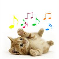 cat voice sound ringtone download