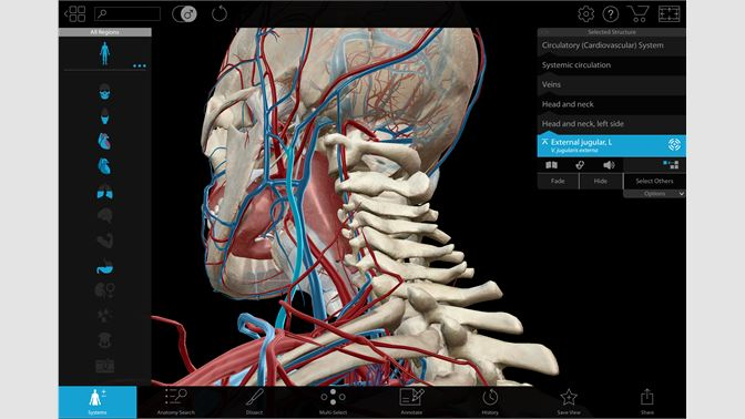 Buy Human Anatomy Atlas 2018 Complete 3d Human Body Microsoft Store