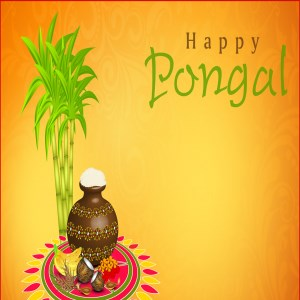 Get happy pongal greetings messages and images microsoft store m4hsunfo
