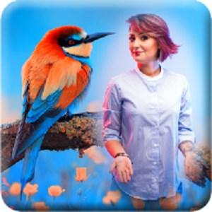 Colorful Birds Poster Frame