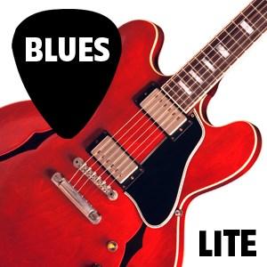 Blues Guitar Lessons LITE