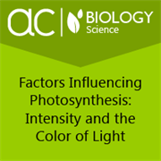 understanding the scientific method photosynthesis and student sheet name: hope lewis date:8/13/2015 instructor's name: margaret beucher assignment: scie207 phase 1 lab report title: understanding the scientific method: photosynthesis and cellular respiration.