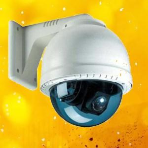 IP Camera DVR Trial