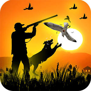 New Birds Hunting Game 2019