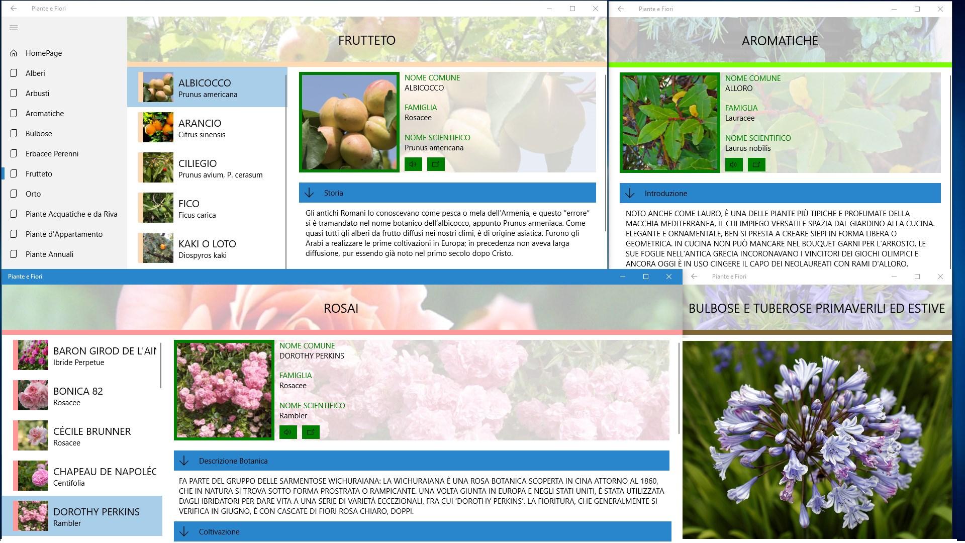Immagini Piante E Fiori buy piante e fiori - microsoft store