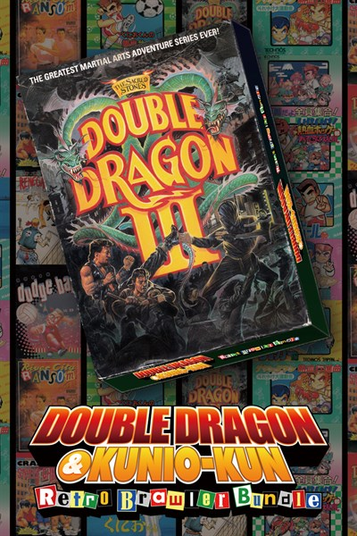 DOUBLE DRAGON Ⅲ: The Sacred Stones