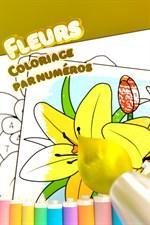 Coloriage Etoile De Pouvoir.Obtenir Fleurs Coloriage Par Numeros Microsoft Store Fr Ca