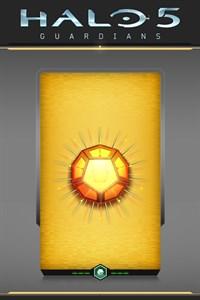 Halo 5: Guardians – Spartan Recruit REQ Pack