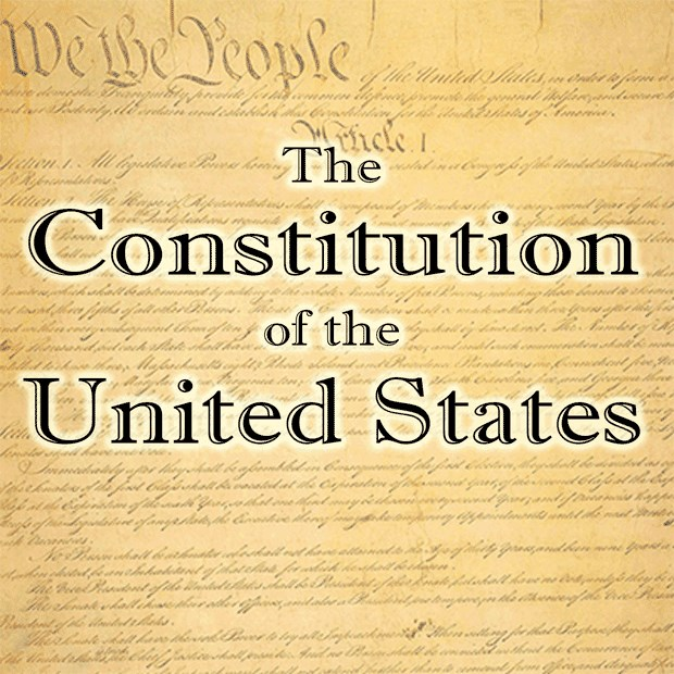 The Best Constitution App  Pics