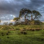 Aucklands One Tree Hill by Ian Rushton