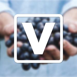 Get New Life Vineyard - Microsoft Store en-BH