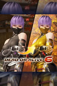 DOA6 Morphing Ninja Costume - Ayane