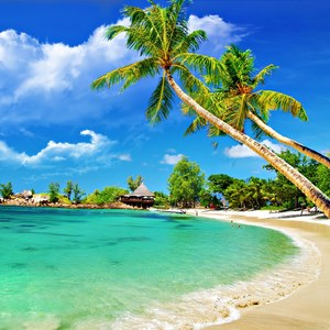 Get Free Beach Wallpapers Microsoft Store