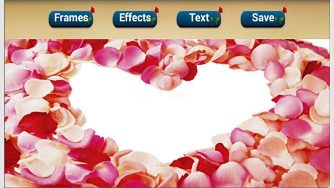 Get Roses Flower Photo Frame - Microsoft Store