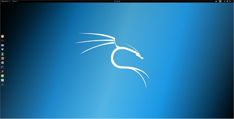 Kali Linux Screenshot