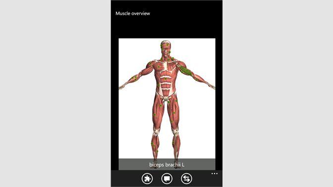 Get Visual Anatomy Lite - Microsoft Store
