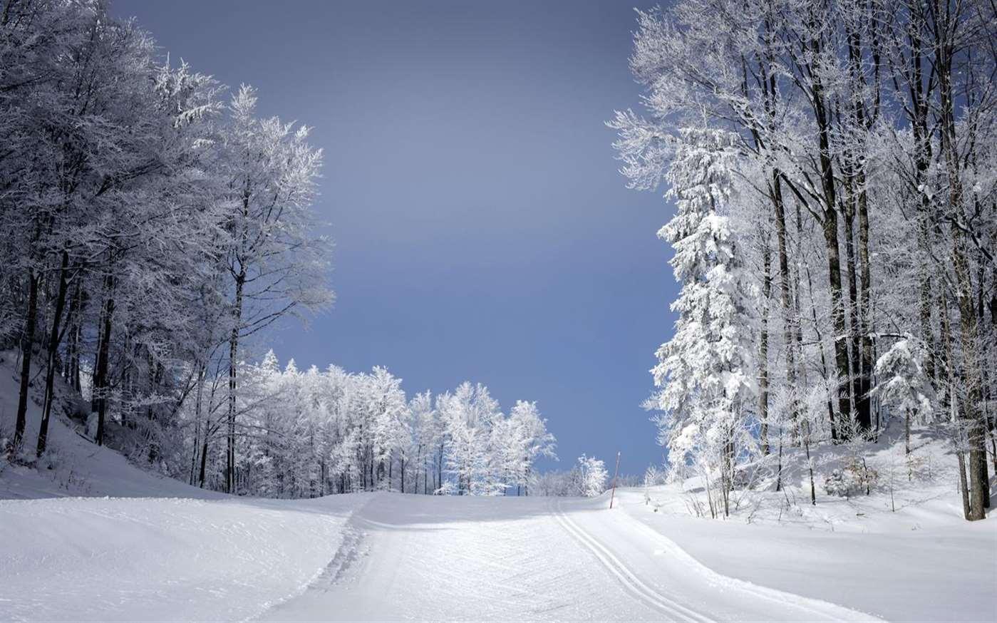 微软又发三款Win 10壁纸包:雨伞/滑雪/春天艺术的图片 第5张