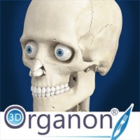 Get 3D Organon Anatomy - Skeleton, Bones, and Ligaments
