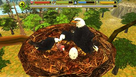 Buy Eagle Simulator - Microsoft Store
