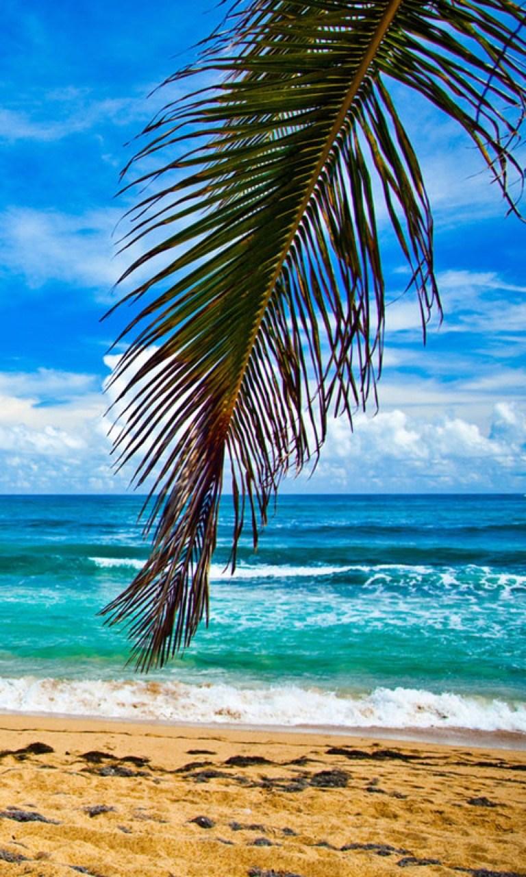 Get Summer Beach Wallpapers - Microsoft Store