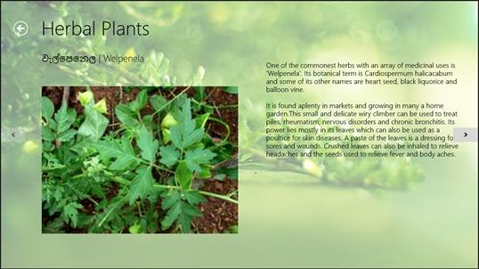 Herbal Plants of Sri Lanka for Windows 10 PC Free Download - Best