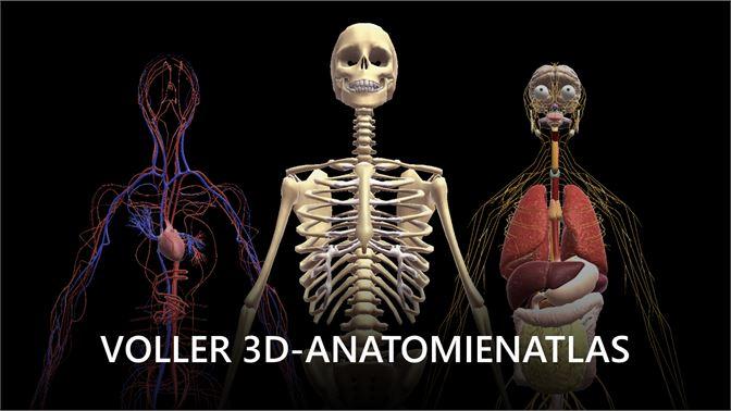 Menschlichen Körper Erforschen beziehen – Microsoft Store de-DE