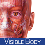 Muscle Premium: 3D Visual Guide for Bones, Joints & Muscles — Human Anatomy & Kinesiology Logo