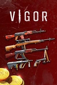 Carátula del juego VIGOR: ARMORY PACK
