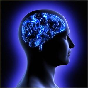 Get Brain Challenge - Microsoft Store