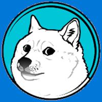 Cum se extrag Dogecoins (instalare și utilizare)