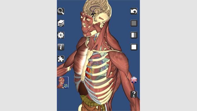 Get 3d Bones And Organs Anatomy Microsoft Store En Ca