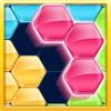 Block Hexa Puzzle King