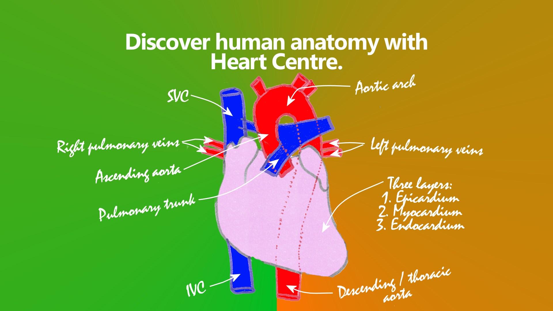 Get Heart Centre Microsoft Store