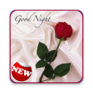 Good Night Love Images Kopen Microsoft Store Nl Nl