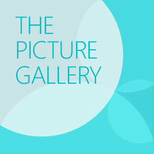 get picture gallery microsoft store