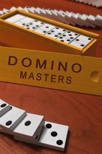 Domino Masters