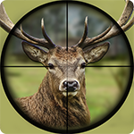 Deer Hunting: Animal Hunter 2019