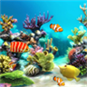 aquarium 4k live wallpaper